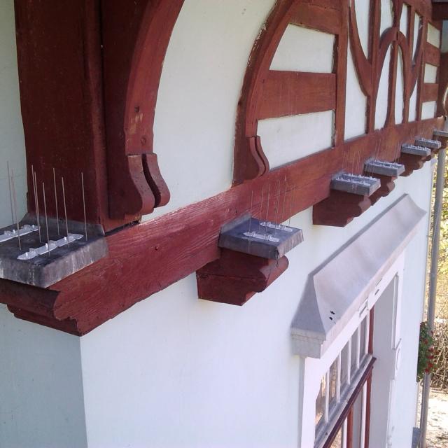 Instalace hrotů proti ptactvu Jablonec nad Nisou - RAPEL.CZ