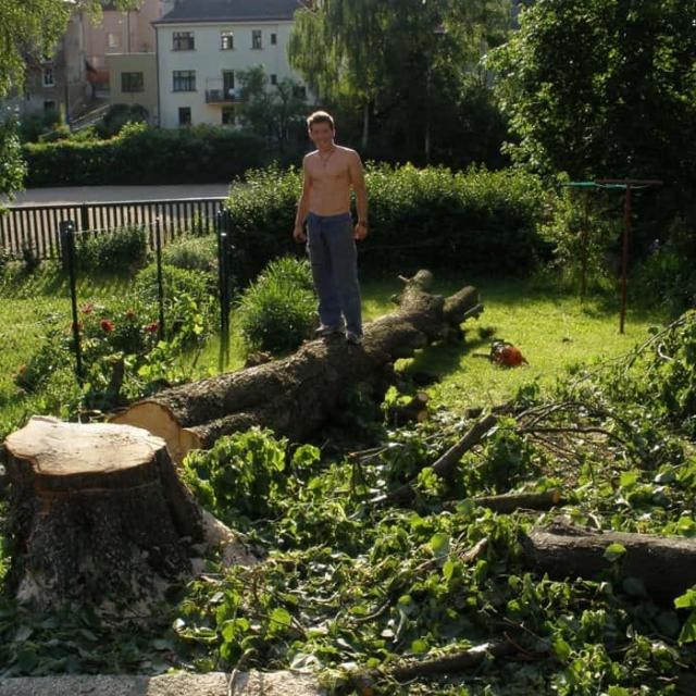 Kácení stromů Jablonec nad Nisou - RAPEL.CZ