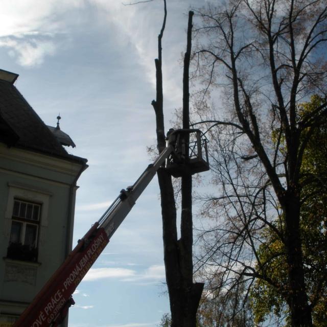 Kácení stromů z plošiny - RAPEL.CZ